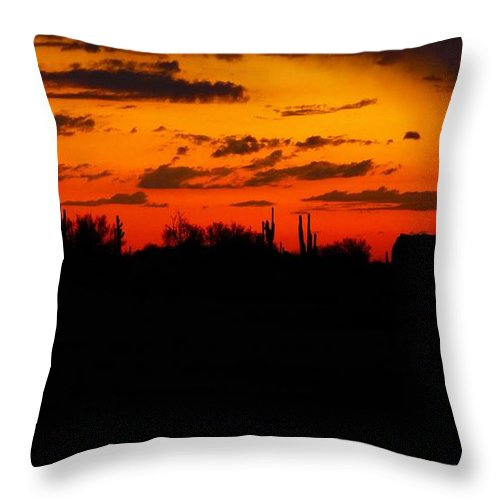 Nature Throw Pillow featuring the photograph Arizona Sunset by Lisa Spero