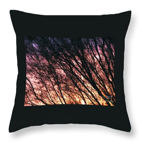 Arizona Throw Pillow featuring the photograph Arizona Sunset by Stacey May