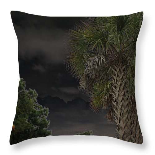 Digital Art Throw Pillow featuring the photograph Around Midnight by Suzanne Gaff