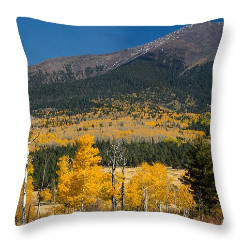Fall Throw Pillow featuring the photograph Hart Prairie by Susan Westervelt