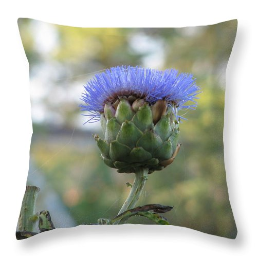 Artichoke Throw Pillow featuring the photograph Artichoke by Kelly Mezzapelle