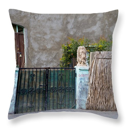 Decorative Throw Pillow featuring the photograph Artistic Entry 2 by Bernard Barcos