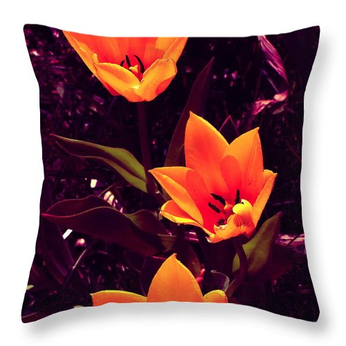 Tulips Throw Pillow featuring the photograph Artistic Tulips By Earl's Photography by Earl Eells a