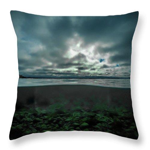 Underwater Throw Pillow featuring the photograph Hostsaga - Autumn tale by Nicklas Gustafsson