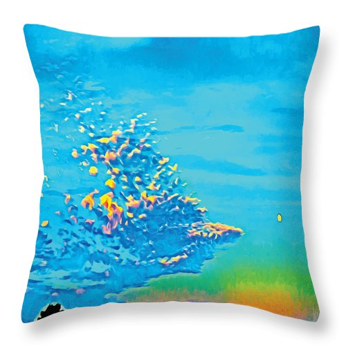 Sky Throw Pillow featuring the photograph 90 Volitant Culturati by Thisismeavery
