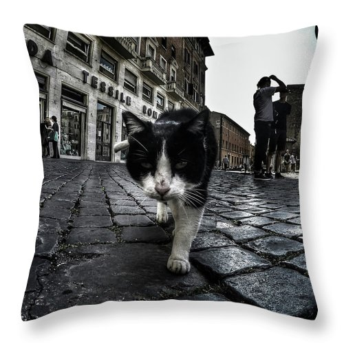 Cat Throw Pillow featuring the photograph Street Cat by Nicklas Gustafsson