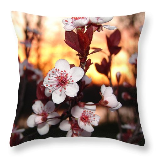 Throw Pillow featuring the photograph As The Sun Sets by Luciana Seymour
