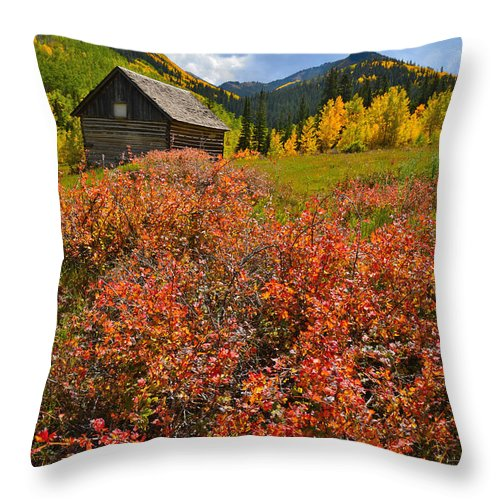 Colorado Throw Pillow featuring the photograph Ashcroft Cabin by Ray Mathis