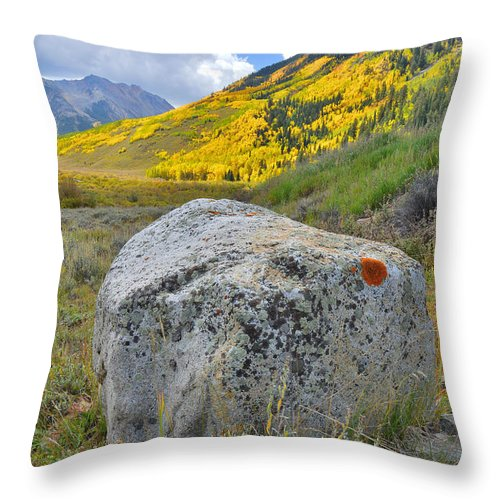 Ashcroft Throw Pillow featuring the photograph Ashcroft Colors by Ray Mathis