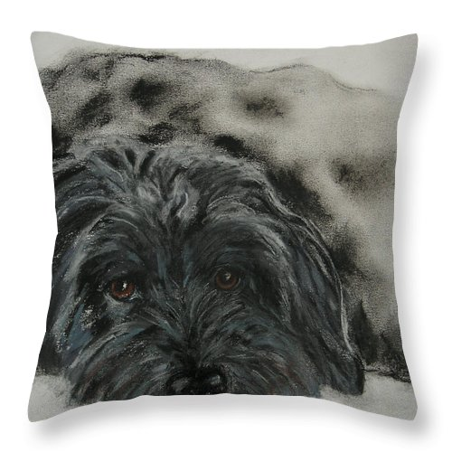 Dog Throw Pillow featuring the drawing Asia by Cori Solomon