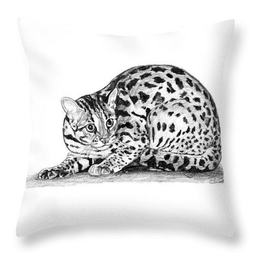 Asian Leopard Cat Throw Pillow featuring the drawing Asian Leopard Cat by Dan Pearce