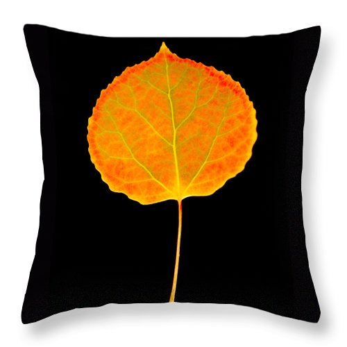 Leaf Throw Pillow featuring the photograph Aspen Leaf by Marilyn Hunt