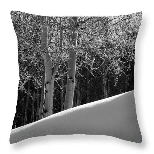 Colorado Throw Pillow featuring the photograph Aspencade by Skip Hunt