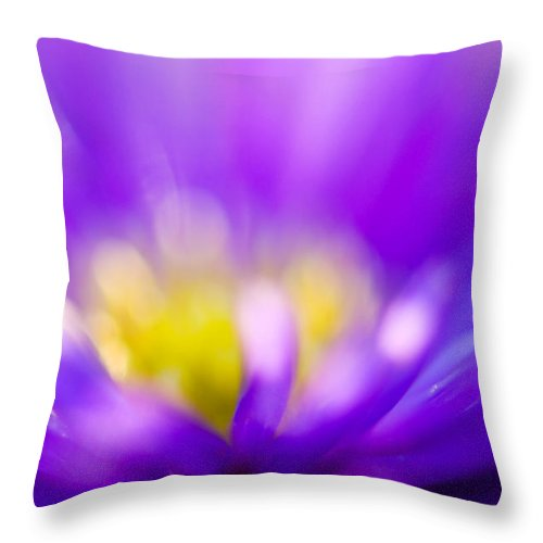 Flower Throw Pillow featuring the photograph Aster Flower by Silke Magino