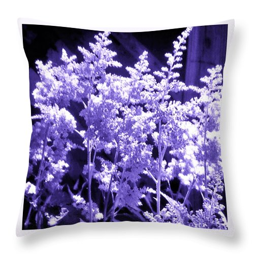 Astilble Throw Pillow featuring the photograph Astilbleflowers In Violet Hue by Debra Lynch