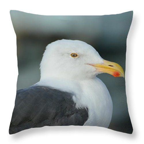 Western Gull Throw Pillow featuring the photograph At Rest by Fraida Gutovich