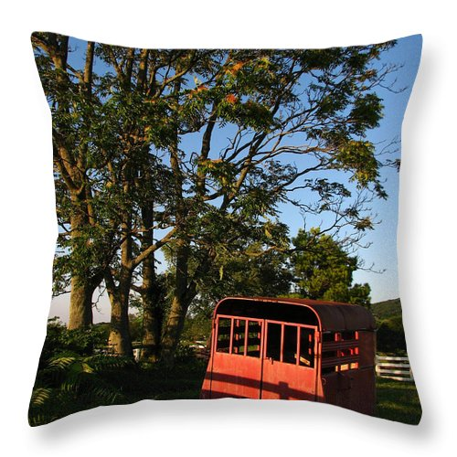Landscape Throw Pillow featuring the photograph At Rest by Todd Blanchard