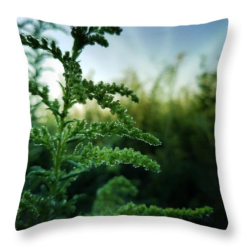 Ay The Break Of Day Throw Pillow featuring the photograph At The Break Of Day by Maria Urso