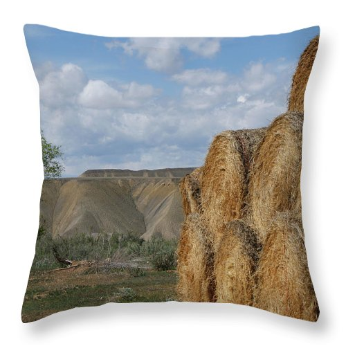Hay Throw Pillow featuring the photograph At The End Of Nowhere Road by Ernie Echols