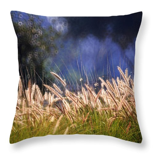 Nature Throw Pillow featuring the photograph At The Rock Garden Tel Aviv by Dubi Roman