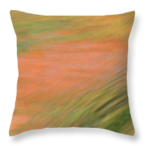 Abstract Art Throw Pillow featuring the photograph At The Subtle Feeling Level by Sybil Staples