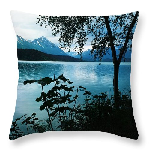 Water Throw Pillow featuring the photograph At The Water's Edge by Ronnie Glover