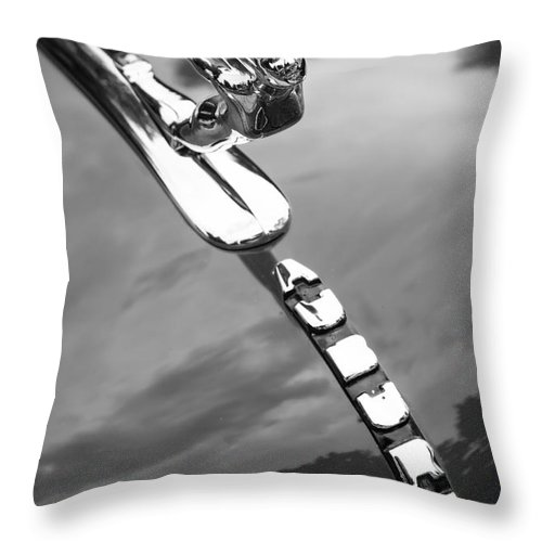 Auburn Throw Pillow featuring the photograph Auburn Monotone by Dennis Hedberg