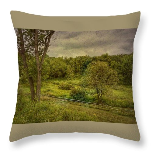 Beechwood Farms Nature Reserve Throw Pillow featuring the photograph August Evening by Shelley Smith