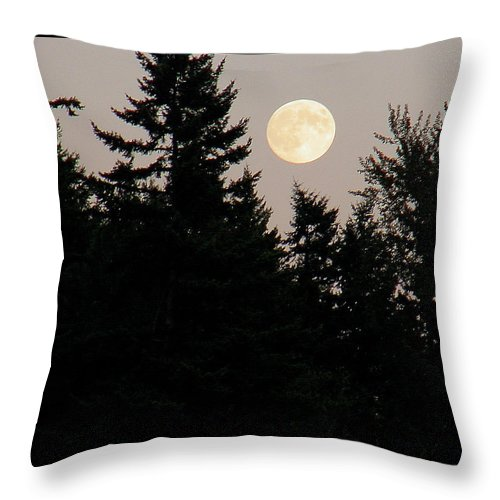 August Throw Pillow featuring the photograph August Full Moon - 1 by Shirley Heyn