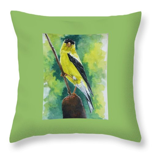 Common Bird Throw Pillow featuring the painting Aureate by Barbara Keith