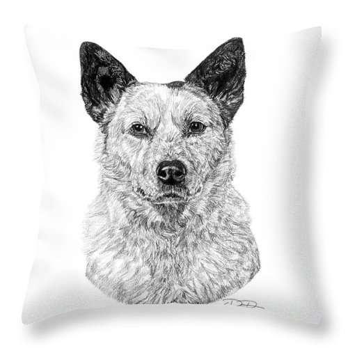 Australian Cattle Dog Throw Pillow featuring the drawing Australian Cattle Dog by Dan Pearce