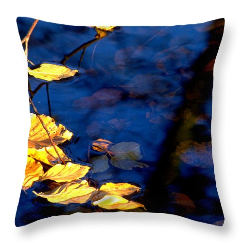 Leaves Throw Pillow featuring the photograph Autum Leaves by Michael Mogensen