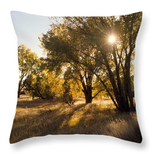 Fall Throw Pillow featuring the photograph Autum Sunburst by Jerry McElroy
