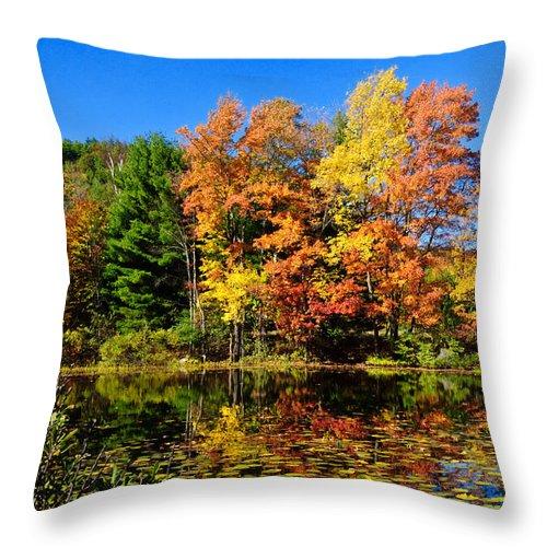 Adirondacks Throw Pillow featuring the photograph Autumn - Fall Color by Louis Dallara