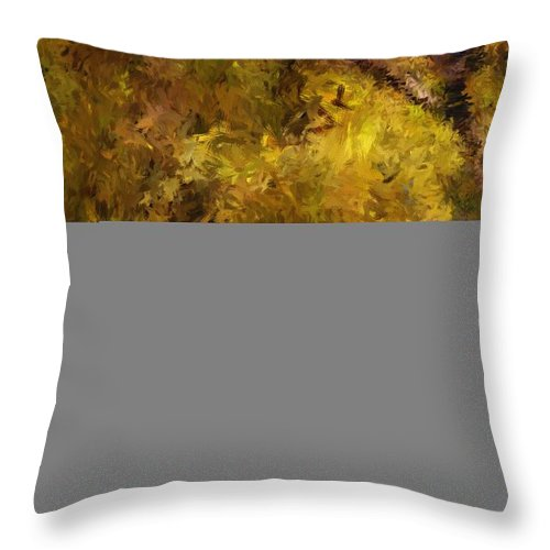 Abstract Digital Painting Throw Pillow featuring the digital art Autumn Abstract by David Lane