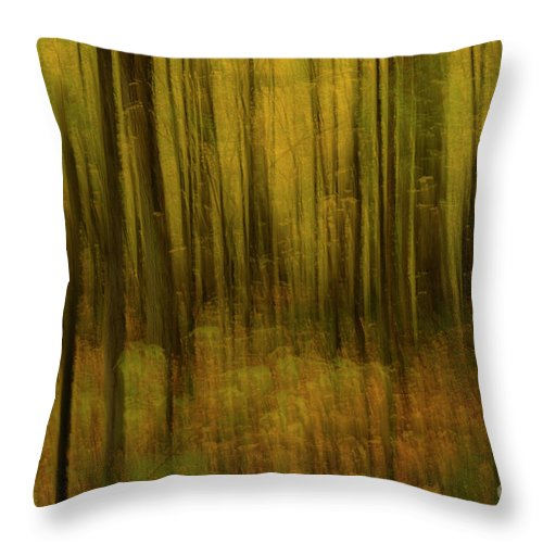 Fall Colours Throw Pillow featuring the photograph Autumn Abstract by Julie DeRoche