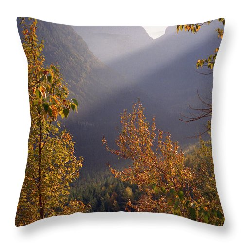 Mountains Throw Pillow featuring the photograph Autumn At Logan Pass by Richard Rizzo