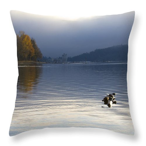Lake Coeur D' Alene Throw Pillow featuring the photograph Autumn At The Lake by Idaho Scenic Images Linda Lantzy