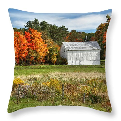 Autumn Throw Pillow featuring the photograph Autumn Barn by Rusty Glessner