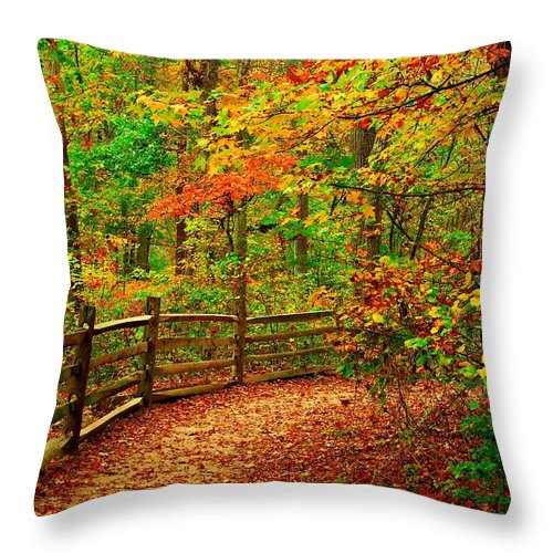 Autumn Landscapes Throw Pillow featuring the photograph Autumn Bend - Allaire State Park by Angie Tirado