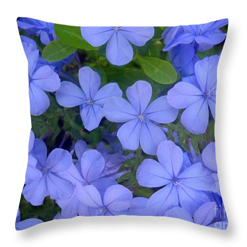 Nature Throw Pillow featuring the photograph Autumn Blues by Lucyna A M Green