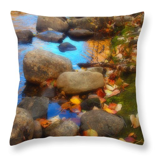 Autumn Throw Pillow featuring the photograph Autumn By The Creek by Tara Turner