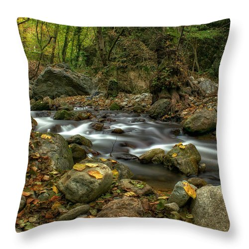 Landscape Throw Pillow featuring the photograph Autumn By The River by Plamen Petkov