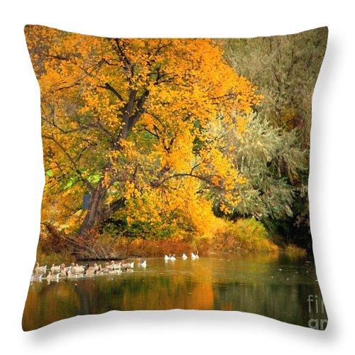 Fall Throw Pillow featuring the photograph Autumn Calm by Carol Groenen