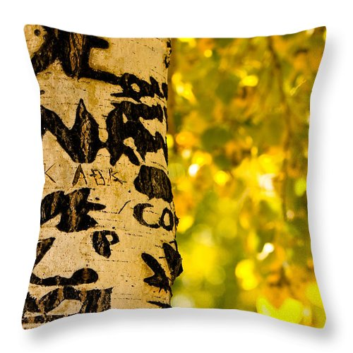 Aspens Throw Pillow featuring the photograph Autumn Carvings by James BO Insogna