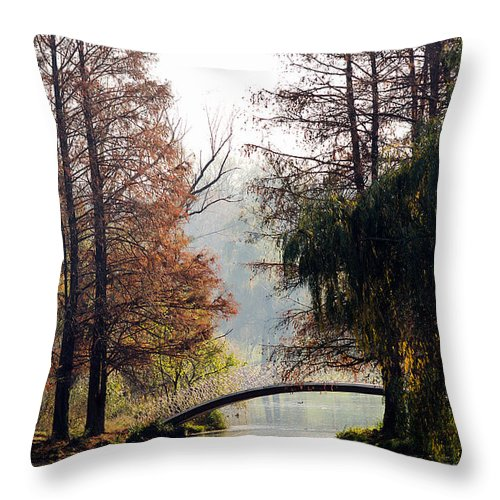 Park Throw Pillow featuring the photograph Autumn Colors by Adrian Berendei