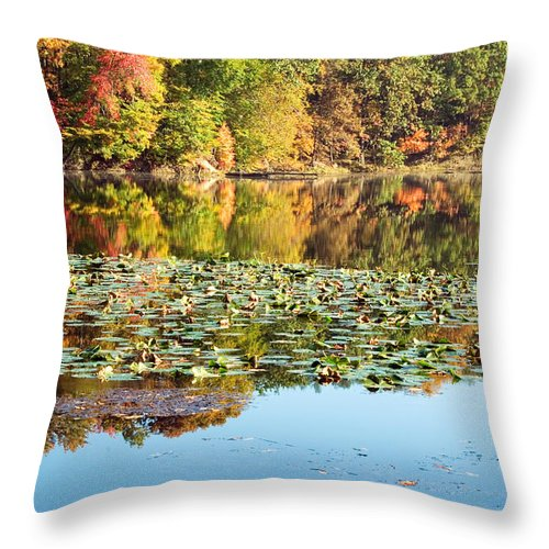 Autumn Throw Pillow featuring the photograph Autumn Colors by Amanda Kiplinger