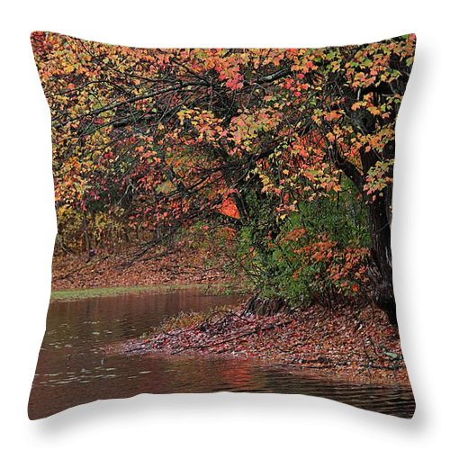 Autumn Throw Pillow featuring the photograph Autumn Colors By The Pond by Linda Crockett