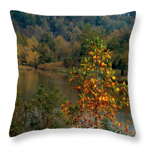 Fall Colors Throw Pillow featuring the photograph Autumn Colors by Gary Wonning