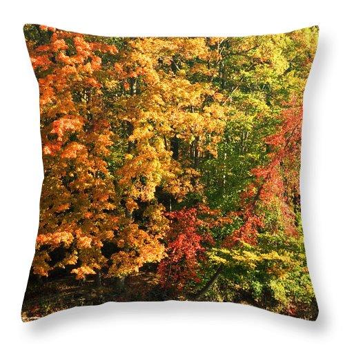 Autumn Throw Pillow featuring the photograph Autumn Colors II by Amanda Kiplinger